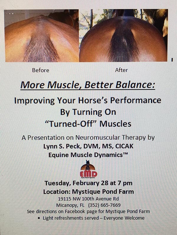 more-muscle-better-balance3